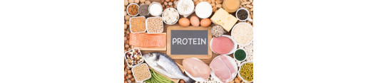 Proteiny a pudry